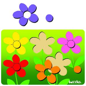 Colour Match Flowers